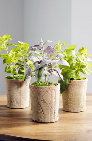 Artificial Table Top Plants